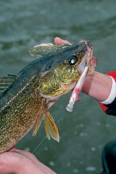 Lake Gogebic Fishing Tournament